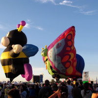 Get high, very high at the balloon festival