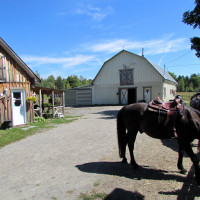 Horse riding at La Clef Des Champs ranch